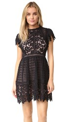 Rebecca Taylor Short Sleeve Lace Mix Dress Black