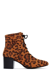 Nasty Gal Shoe Cult For The Love Of Mod Boot