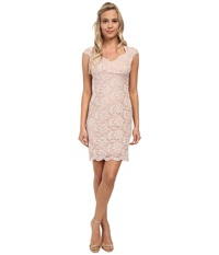 Alejandra Sky Short Lace Dress W Scalloped Hem Blush Women's Dress Pink