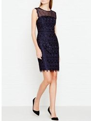 Reiss Kirsty Mixed Lace Dress Navy