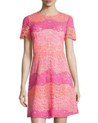 Shoshanna Rio Floral Lace Dress Pink Pattern
