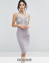 Elise Ryan Scallop Lace Pencil Dress With Contrast Panelling Grey Nude