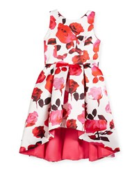 Zoe Matte Sateen Floral High Low Dress Pink