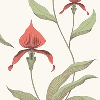 Cole And Son Orchid Wallpaper 95 10054