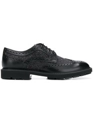 Tod's Lace Up Brogues Black