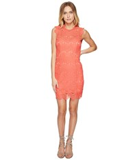 Free People Daydream Bodycon Slip Dress Coral Women's Dress