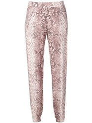 Gold Hawk Snake Print Trousers Pink