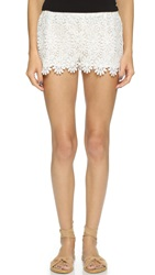Candela Buttercup Shorts White