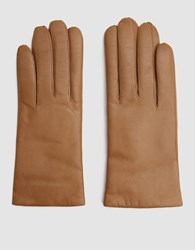 Hestra Hairsheep Cashmere Gloves In Camel