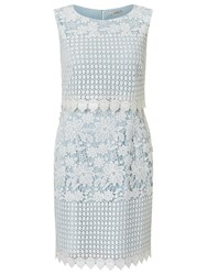 Precis Petite Abra Lace Dress Pastel Blue Multi