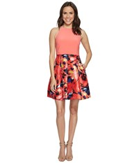 Adrianna Papell Jersey Halter Mikado Print Cocktail Dress Desert Flower Navy Women's Dress Multi