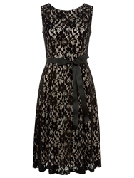 Kaliko Lace Dress Black