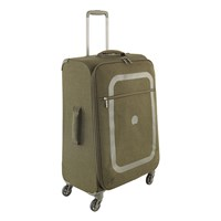 Delsey Dauphine 2 4 Wheel Trolley Case Cactus