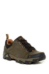 Ahnu Coburn Low Sneaker Green