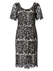 Jacques Vert Leaf Lace Dress Black