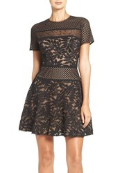 Bcbgmaxazria Women's Lace Knit Fit And Flare Dress Black Combo