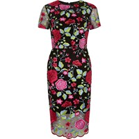 River Island Womens Pink Embroidered Floral Mesh Dress