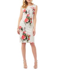 Phase Eight Rose Bouquet Sheath Dress Ivory Rose Multi