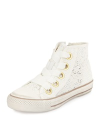 Ash Venus Lace High Top Sneaker Off White