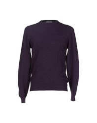 Roda Knitwear Jumpers Men Purple