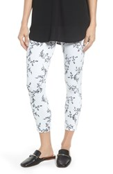 Lysse Toothpick High Rise Crop Denim Leggings Hana Print