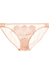 Mimi Holliday Puffin Low Rise Guipure Lace And Stretch Silk Satin Briefs Pink
