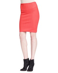 Alexander Wang Fitted Chevron Pencil Skirt Women's