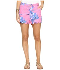 Lilly Pulitzer Buttercup Shorts Tiki Pink Out On A Limb Women's Shorts
