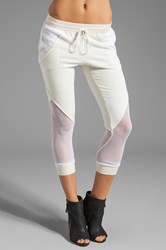 Pencey French Terry Fencing Pant Cream