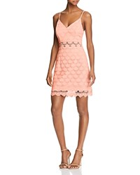 Aqua Body Con Lace Dress 100 Exclusive Pale Pink