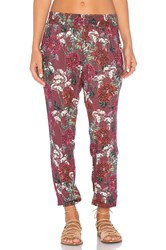 Beach Riot Autumn Pant Burgundy