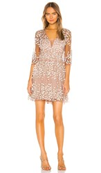 Bcbgmaxazria Embroidered Cocktail Dress In Blush. Bare Pink