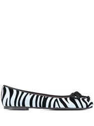 Pretty Ballerinas Zebra Print Ballerina Shoes 60