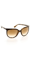 Ray Ban Cats 1000 Sunglasses Tortoise Brown Gradient