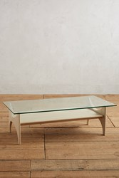 Anthropologie Panorama Display Coffee Table Neutral