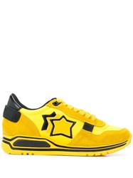 Atlantic Stars Shaka Low Top Sneakers 60