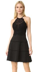Rebecca Taylor Sleeveless Tweed And Lace Dress Black