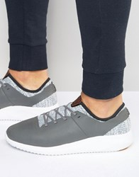Boxfresh Ceza Trainers Black Grey