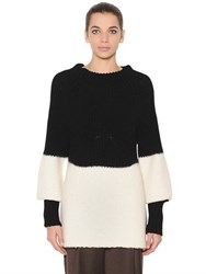 Sportmax Wool And Alpaca Knit Sweater