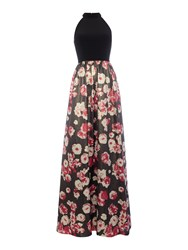 Adrianna Papell Halter Neck Posy Print Full Skirt Dress Black