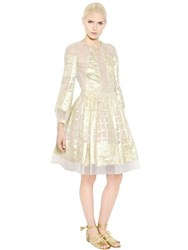 Alberta Ferretti Long Sleeves Silk Lace And Lurex Dress