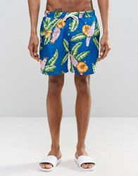 Asos Swim Shorts With Tropical Parrot Print In Mid Length Blue