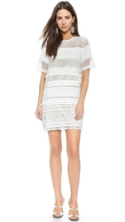 Endless Rose Lace Shift Dress White