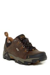 Ahnu Coburn Waterproof Sneaker Brown