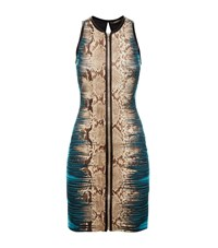 Roberto Cavalli Bodycon Mirror Print Zip Dress Female Brown