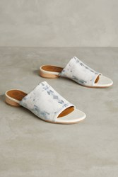 Anthropologie Sa Slide Esakyel Print Blue Motif