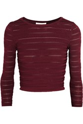Rebecca Minkoff Birdland Cropped Pointelle Trimmed Stretch Knit Sweater Red