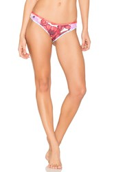 Maaji Orchid Dolphins Bottom Red