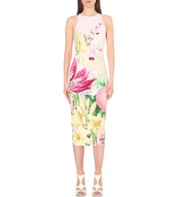 Ted Baker Julee Floral Print Bodycon Midi Dress Nude Pink