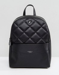 Fiorelli Trenton Quilted Backpack In Black Black Quilt